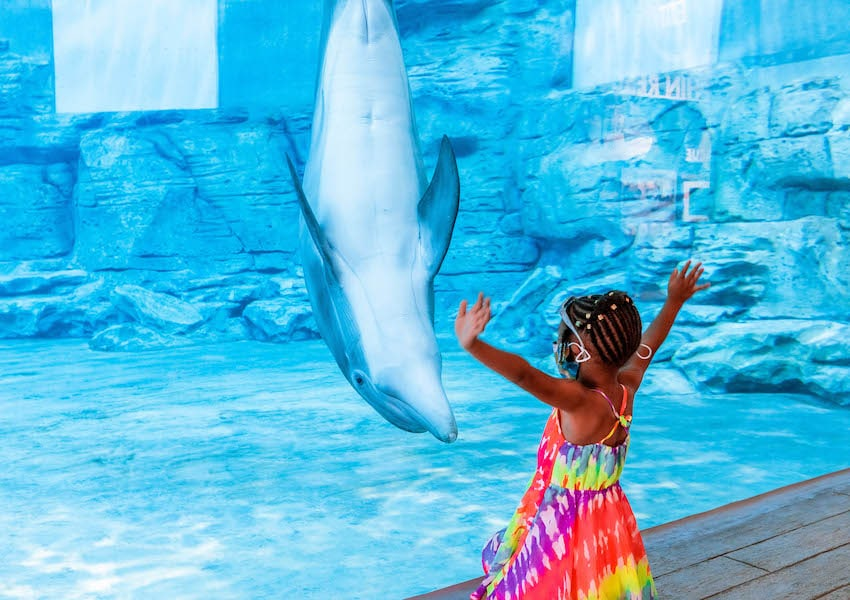 KGS Clearwater Beach and Marine Aquarium